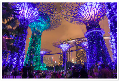 Singapore Supertrees at night Posterlounge